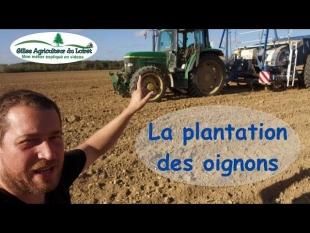 La plantation des oignons 2018