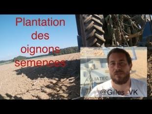 Plantation oignons semences 2016