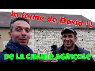 La ferme de david ! de la chaîne agricole