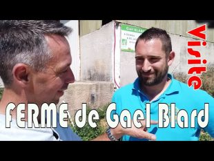 Visite de la ferme de gael blard agriculteur bio