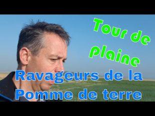 Tour de plaine juin 2018