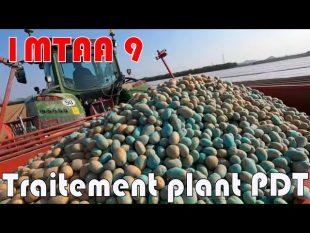 Fin de plantation #imtaa 9