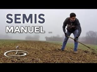 Semis de blé à la volée – 2016