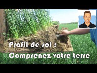 Comprenez votre terre avec un profil de sol