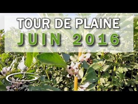 Dernier tour de plaine avant moisson – juin 2016