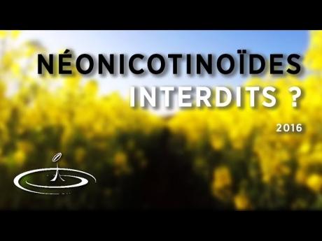 Les néonicotinoïdes en agriculture interdits ? – 2016