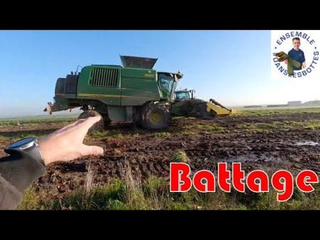 Battage du maïs bio en cuma 🚜