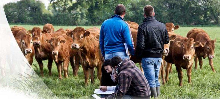 Bannière installation en agriculture 2
