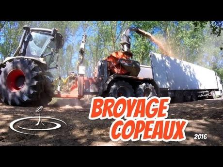 Broyage de bois, déchiqueteuse gandini / tracteur claas xerion 3300 – 2016