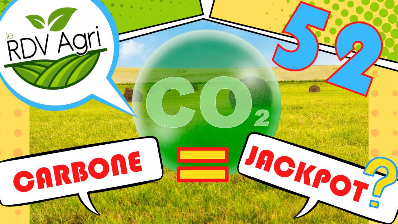 Rémunération carbone