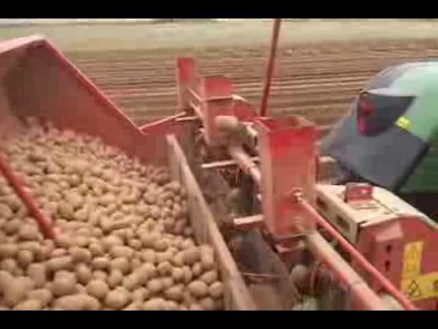 Plantation pommes de terre guidage rtk.
