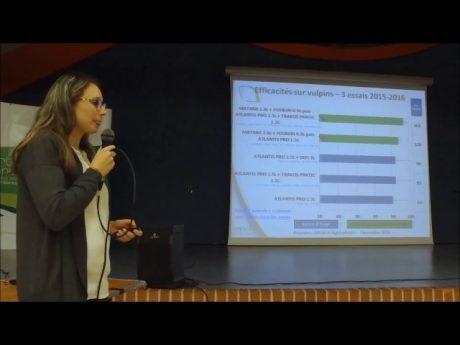 Lutte contre le vulpin les résultats d'efficacité des programmes herbicides