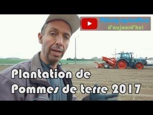 Pommes de terre : plantation 2017