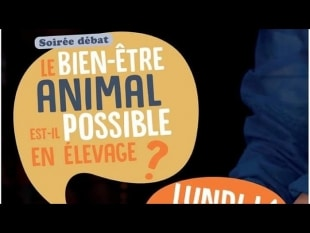 Bien etre animal est il possible en elevage