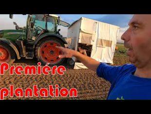 Premiére plantation des poireaux