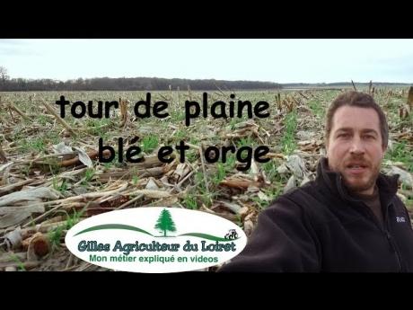 Tour de plaine blé et orge d'hiver