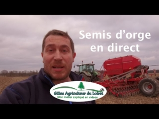 Semis orge en direct (horsch avatar)