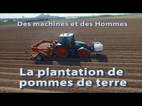 Des machines et des hommes : plantation de pommes de terre.
