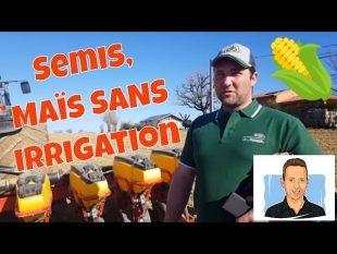 Guillaume sème du maïs sem'expert dry sans irrigation en terres séchantes !