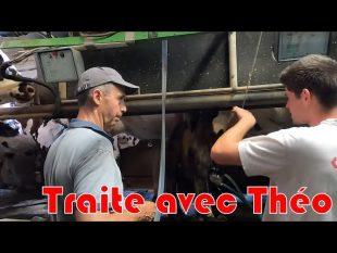 Traite des vaches avec théo futur éleveur