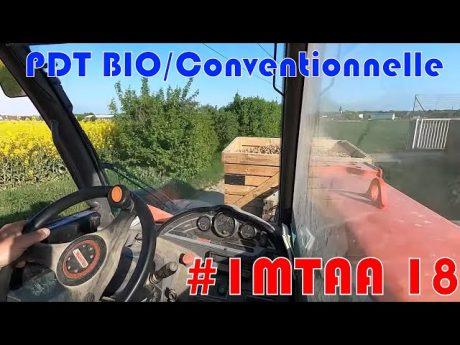 Différences bio/conventionnel : plantation pdt bio #imtaa episode 18