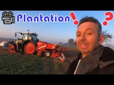 🎥 plantation des pommes de terre et petit calcul 🤔