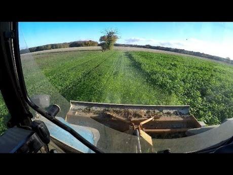 Broyage des couverts végétaux