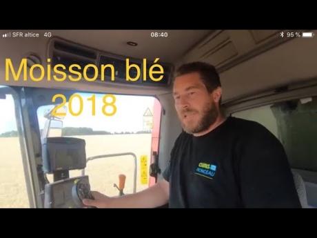 🌾 c'est parti ! moisson blé 🌾 2018