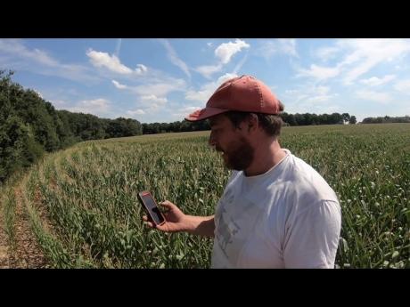 Irrigation des maïs 🌽