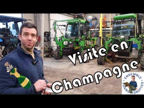 Visite en champagne 🍾 chez @david faivre – révélateur de terroir