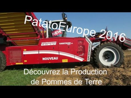 Patatoeurope 2016 : la filière pommes de terre
