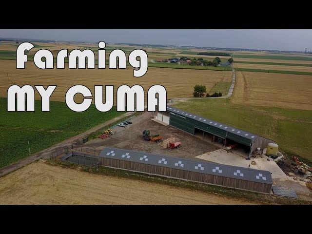 Défi : farming my cuma