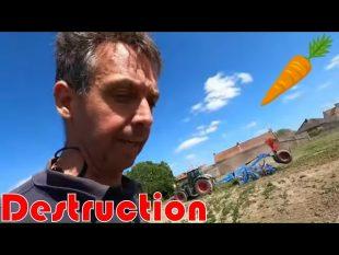 Destruction des carottes / semis rgi