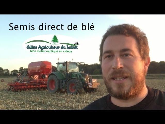 Semis direct blé après maïs (horsch avatar)