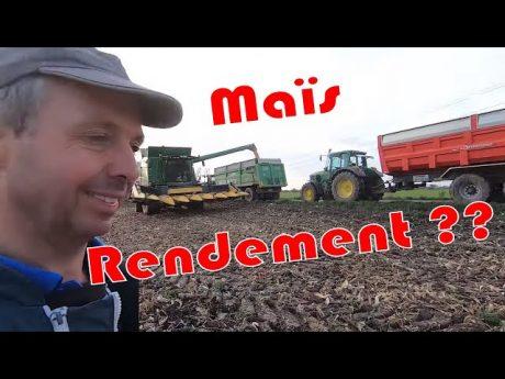 Battage du maïs sem'expert dry, et les rendements ?