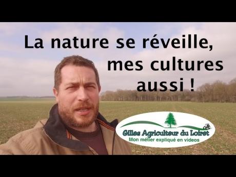 La nature se réveille, mes cultures aussi !