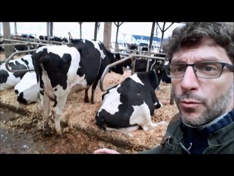 Un bÂtiment confortable pour les vaches