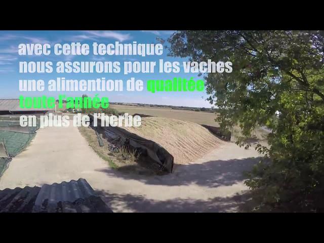 Maïs ensilage *vidéo courte*