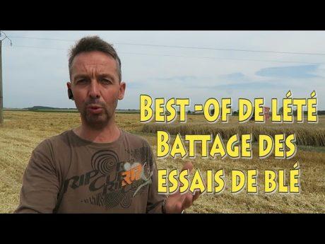 Best of : battage des essais de blé.
