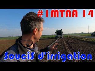 Désherbage betterave et soucis d'irrigation …#imtaa 14