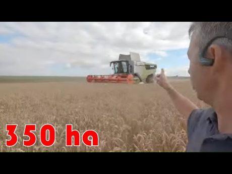 Organisation moisson 350 ha en cuma 1 machine