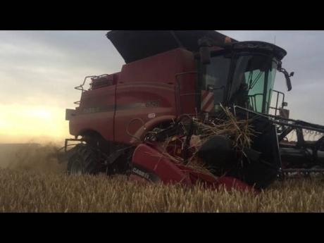 Moisson blé 2016