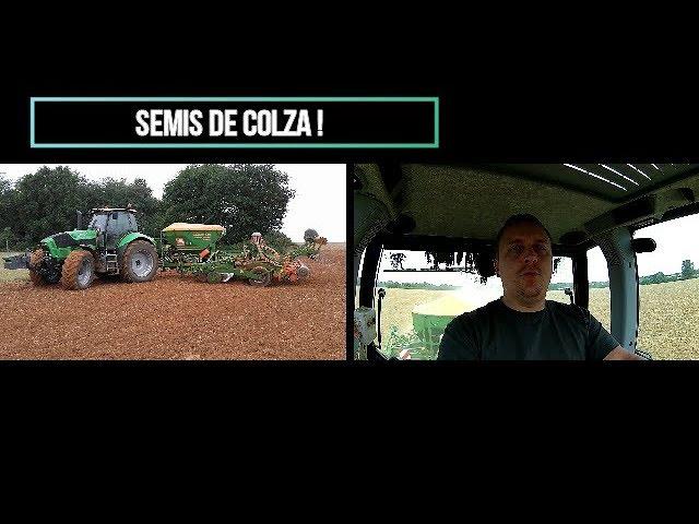 Semis de colza