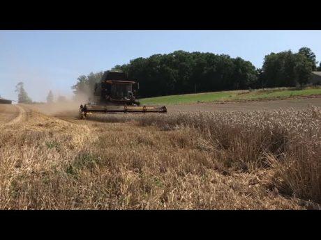 Rôle agronomique du pneu : c'est prouvé scientifiquement ! épisode 9