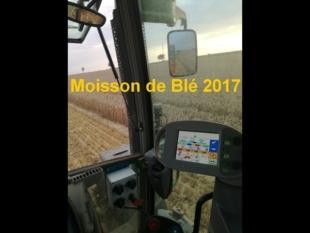 Moisson de blé – 2017 !!