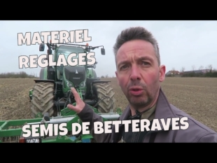 Semis de betteraves 2017