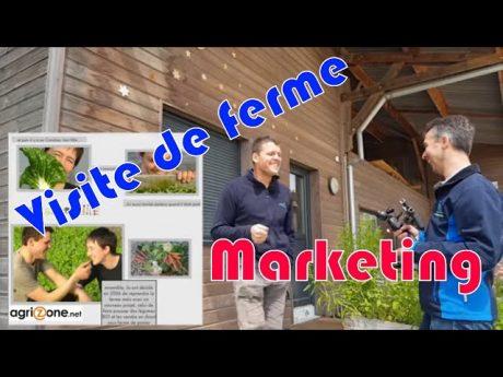 Marketing en agriculture : visite de ferme.