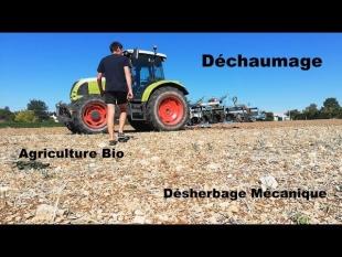 [bio] désherbage mécanique – préparation pour semis de luzerne
