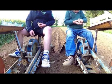 On plante les patates et papi rame un peu…