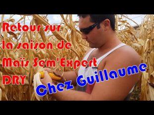 Une saison de maïs sem'expert dry de guillaume